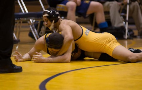 The Wilkes University wrestling team won the 800th match in the program's history Feb. 14 against Ithaca. Here, sophomore Guesseppe Rea pins his opponent.