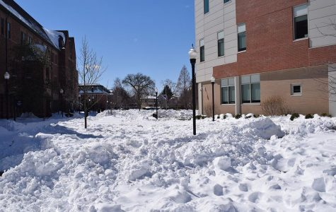 Everyday we're shoveling: How to spend a snow day, or four