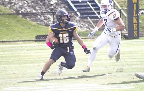Wilkes (0-6) drops homecoming to Widener (4-2), 30-7