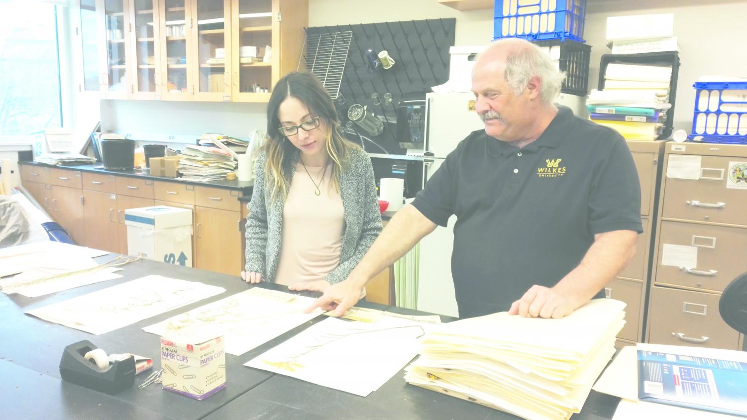Laura Solomon, senior biology major, looking at the corydalis plant with Dr. Kenneth Klemow in the Herbarium.