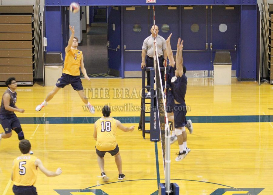 Outside+hitter+Zach+Evans+%281%29+recorded+seven+kills+and+two+blocks+in+Wilkes%E2%80%99+3-0+sweep+against+Neumann+University+in+their+season-opener+on+Tuesday%2C+Jan.+21.